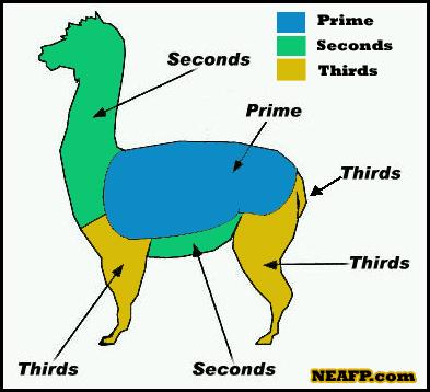 Grades of Alpaca Fiber